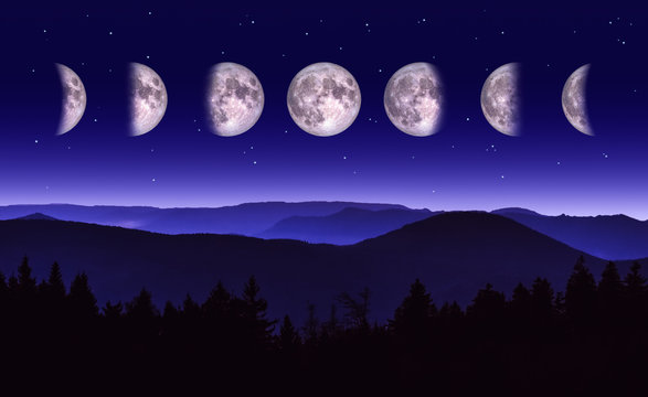 Moon phases illustration. Scenic Night landscape of the different phases of the moon over a mountain range and forest.