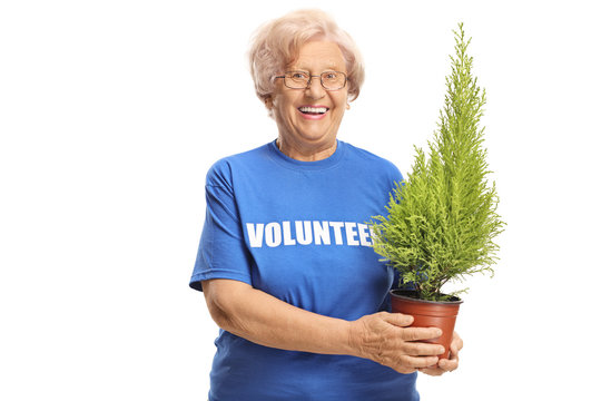 Elderly lady volunteer holding a plant and smiling at the camera