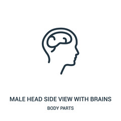 male head side view with brains icon vector from body parts collection. Thin line male head side view with brains outline icon vector illustration.