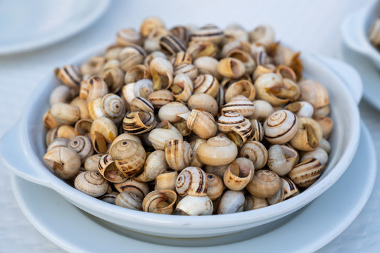 Edible Snails on Plate in Portuguese Restaurant