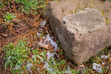 Signs of spring are seen while the evidence of a winter snow remains on the ground