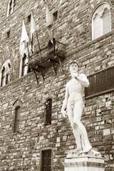 Fototapete - Michelangelo's replica David statue. Florence, Tuscany, Italy