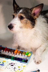 dog with watercolors, artist