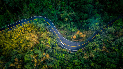 Photo sur Aluminium Route dans la forêt Car in rural road in deep rain forest with green tree forest view from above, Aerial view car in the forest on asphalt road background.