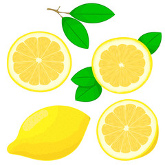 Set of hand drawing lemons