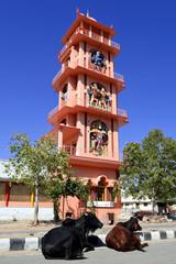 Fototapete - Navkhandiya Balaji Hindu temple, Pushkar, Rajasthan, India