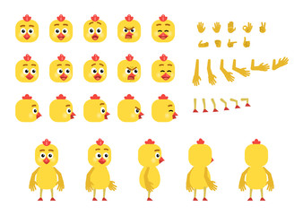 Cartoon chicken creation set. Various gestures, emotions, diverse poses, views. Create your own pose, animation. Flat style vector illustration