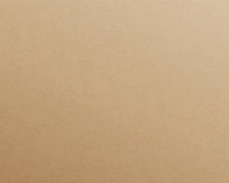Craft paper texture carton board empty cardboard template for scrapbook and handmade things.