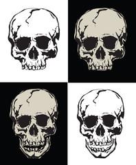 Vector collection grunge human skulls on light and dark background