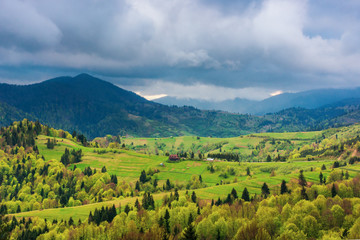 mountainous countryside in springtime. rural fields on grassy hills.  overcast weather