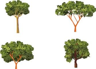 Set of trees isolated on white