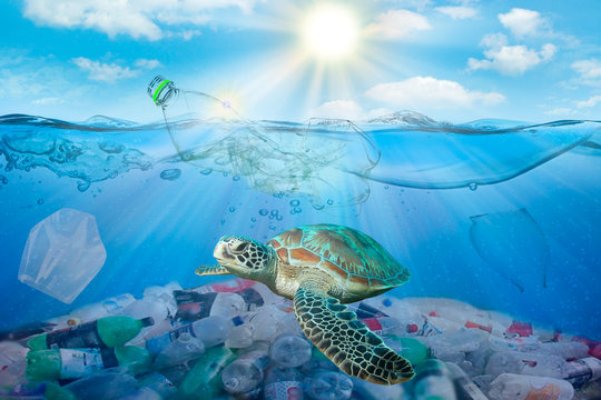 Plastic pollution in ocean environmental problem. Turtles can eat plastic bags mistaking them for jellyfish. dirty water concept