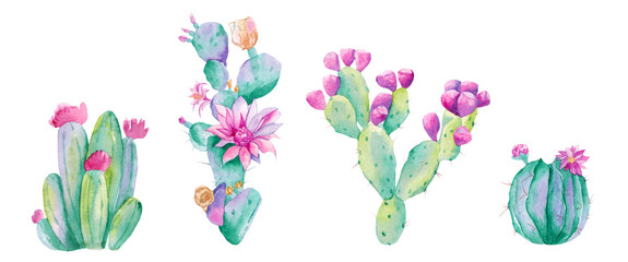 watercolor cactus. Raster illustration. illustration for greeting cards, invitations, and other printing projects. on white background.High resolution.Clipping path included.
