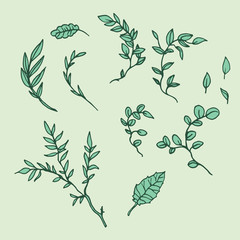 Hand Drawn Branches - Nature Design Elements