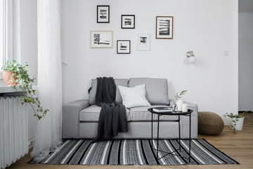 Gray sofa and pattern rug