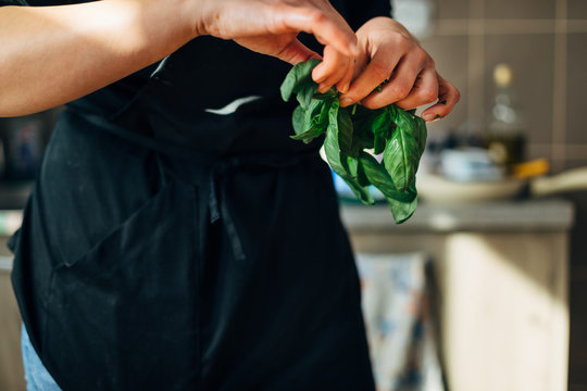 Chef holding fresh basil in the kitchen