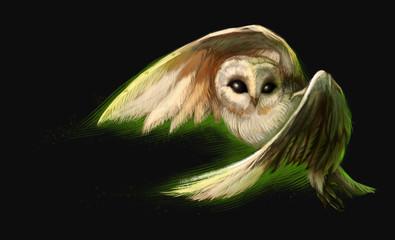 Flying owl. The digital painting. Night bird.