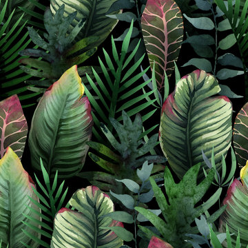 Watercolor seamless pattern of tropical palm and leaves on dark