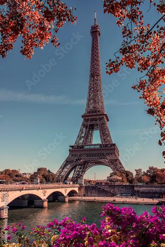 Fototapete eautiful day on the Eiffel Tower in Paris