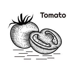 Tomato Hand drawing