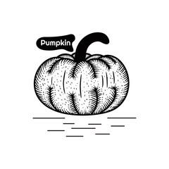 Pumpkin Hand drawing