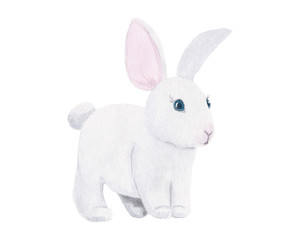 Watercolor hand drawn cute little white rabbit isolated on white background