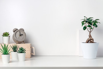 White desk next to an empty wall. Copy space. Green succulents, bonsai, wooden box and concrete clock. Bright composition Wall mural