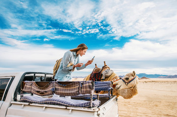 Smiling young woman in car takes photo of camel in the Middle of the Wadi Rum desert in Jordan.