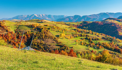 mountainous countryside in autumn. rural fields on grassy hills. trees in fall foliage. wonderful sunny weather in evening.