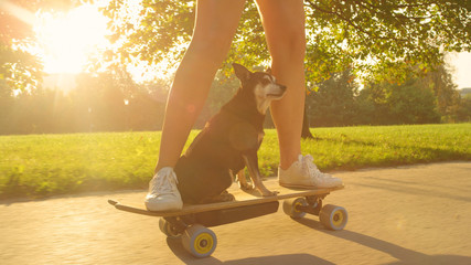 CLOSE UP: Unrecognizable woman riding her electric longboard with her senior dog