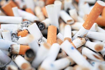 Cigarette butts background / cigarette butts / cigarette