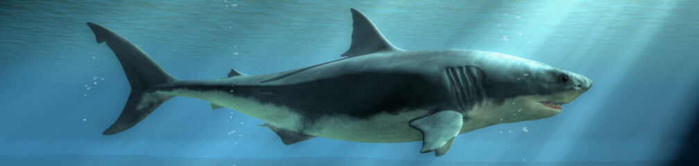 The menacing profile of a great white shark emerges from the depths of the deep blue sea.  Sunlight breaks the surface of the water and shines down on the marine predator. 3D illustration