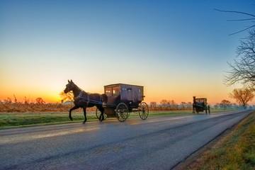 Amish Buggies at Daybreak on Rural Road