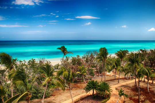 Varadero beach with tyrquis sea and ocean. There is a lot of green palms. Blue sky is in the background. It is beautiful natural bachground.