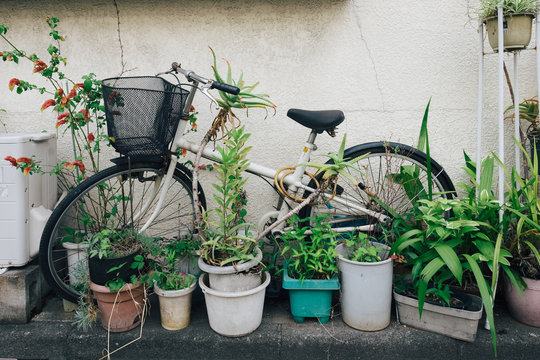 Bicycle left amongst urban street garden in Tokyo, Japan