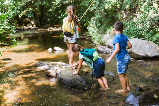Group of children  explore nature