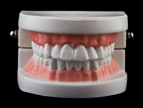 teeth isolated on black background