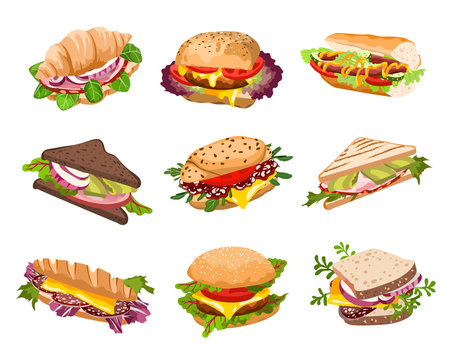vector sandwiches illustration