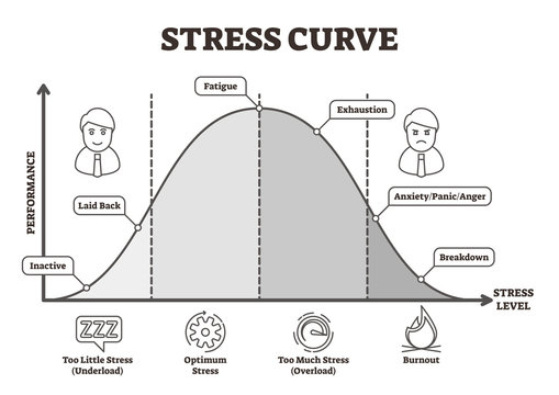 Stress curve vector illustration. Flat BW labeled performance level graphic