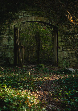 Secret entrance in the forest / Gothic image of an entrance in a castle