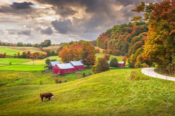 Farmland in Vermont