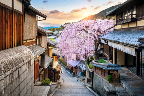Wall mural Cherry blossom in springtime at the historic Higashiyama distirct, Kyoto in Japan.
