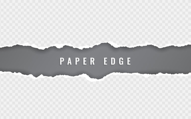 Torn paper edge. Torn paper stripes. Ripped squared horizontal paper strips. Vector illustration