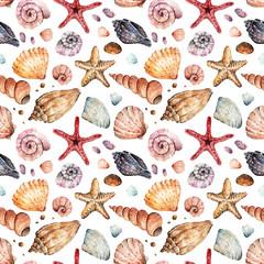 Watercolor illustration, Beautiful seashells, set. postcard for you, background, handmade, seamless pattern, light background