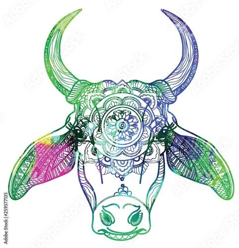 Zebu cow, Indian cow  Meditative coloring, coloring anti