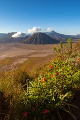 Sunrise view of the Bromo volcano, Indonesia