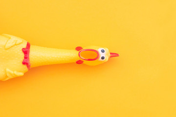 Squeaky chicken toy isolated on a orange background and copyspace. Rubber toy Chicken on a yellow background Wall mural