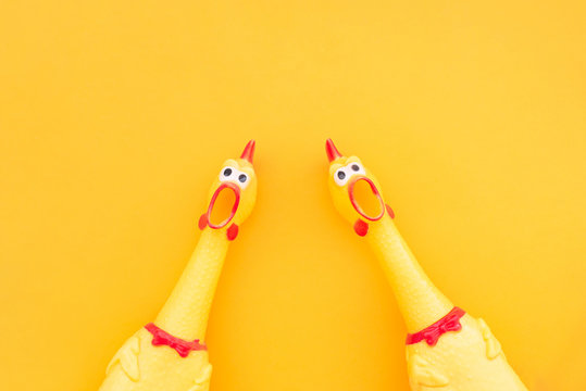 Two screaming chicken toys are isolated on a yellow background, screaming with a mouth open looking into the camera. Chicken toy on a yellow background, pattern for design.