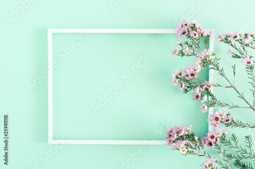 Beautiful flowers composition. Blank frame for text, pink flowers, on pastel light green background. Valentines Day, Easter, Birthday, Mother's day. Flat lay, top view, copy space