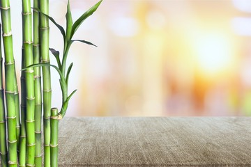 Many bamboo stalks on white background